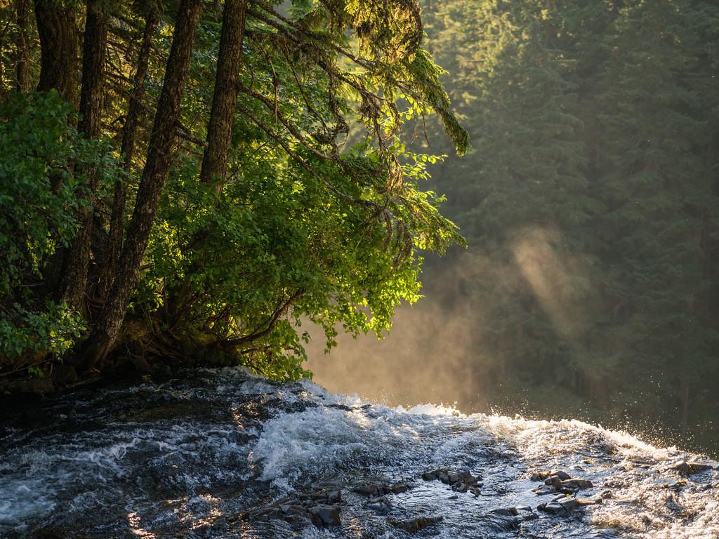Brink of Salt Creek Falls