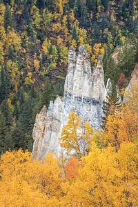 Pinnacles Provincial Park
