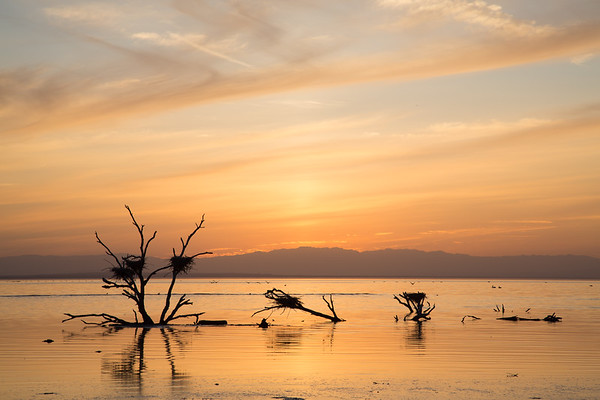 Salton Sea | California