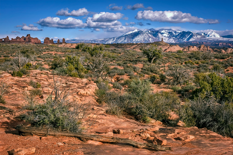Landscape near the Windows Section of Arches National Park with view of snow covered La Sal Mountains near Moab, Utah