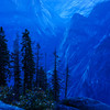 Yosemite Blue Hour 2