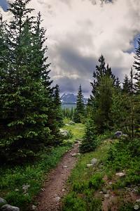 Enter the Wilderness