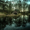 Old boat shed on the Loch of the Lowes...