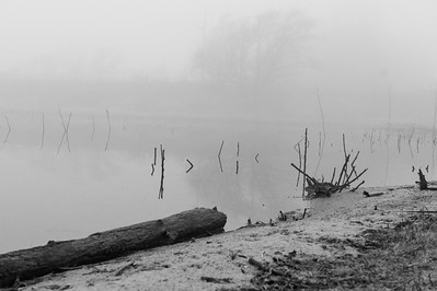 Foggy Morning at the Lake