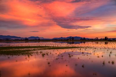 Sunset Near Edison