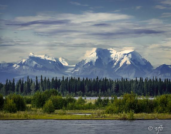 Denali Mountain from Savage River