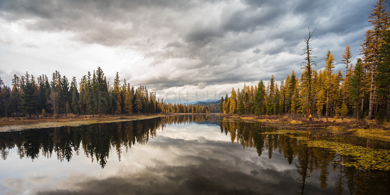 "Clearwater Reflections- The clearwater river as it empties out of Seeley Lake on a cool fall evening just outside Seeley Lake Montana. October 2012. Panoramic print sizes work best with this image. This is a 2:1 ratio image full frame print sizes such as 4X8, 8X16, 10X20, 12X24 work best..... or you may choose any other size and select the ""no Crop"" option which will give you white borders on the top and bottom that can be trimed before framing or matting."
