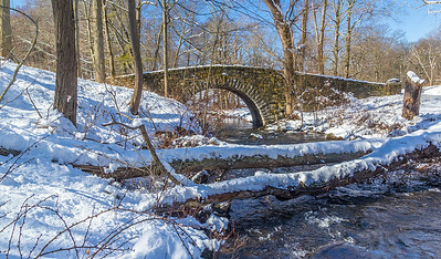 The Pocantico River on a Snowy Morning, February 2018.