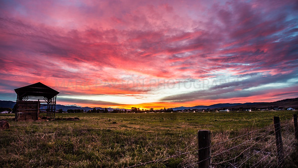 Missoula Sunset- Love being home in Missoula and even better on evenings like these. This was taken next to a hay field in front of my house. Note: This image works best with these print sizes: 8x16, 10x20, 12x24, 15x30, 20x40, and 30x60  Missoula, Montana