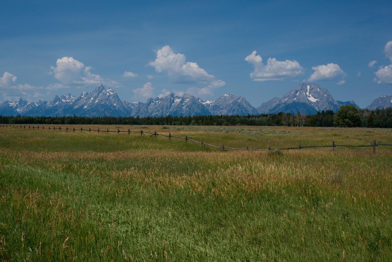 Teton Field