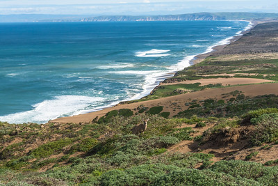 10 mile beach, from the light house, Point Reyes National Seashore
