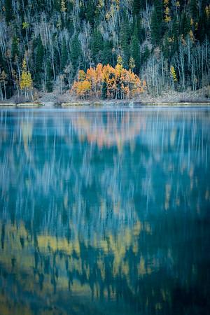 Ring of Fall Foliage