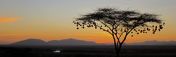 Sunrise at Sambura Game Preserve