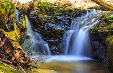 Waterfall at Springbrook National Park