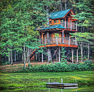 Tree House Retreat
