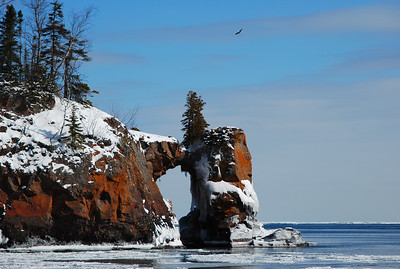 Sea arch and bald eagle
