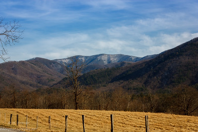 Cade's Cove: Smokey Mountain National Park, TN