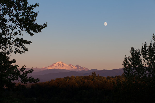 Mt Baker from Aldergrove