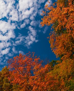 Fall Berkshire Sky
