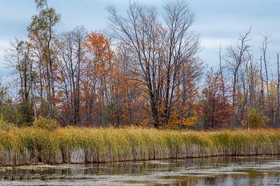 Lake Eugenia #2