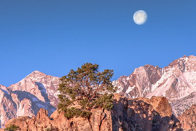 Eastern Sierra Sunrise with Full Moon