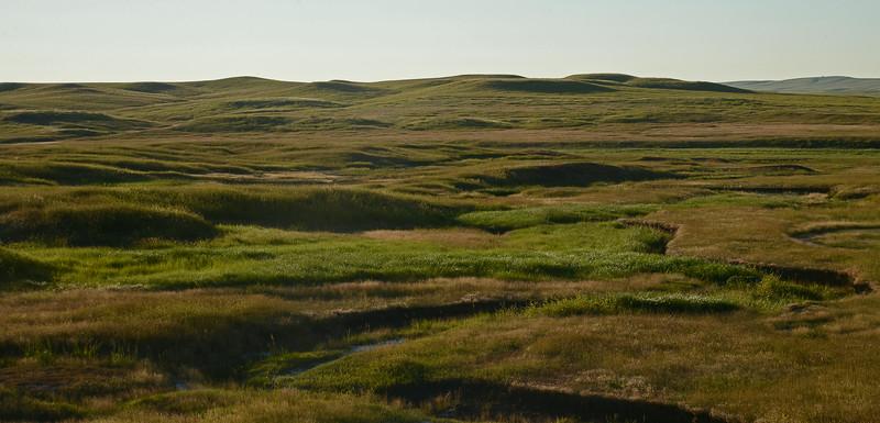 Grassland near Slim Buttes, South Dakota