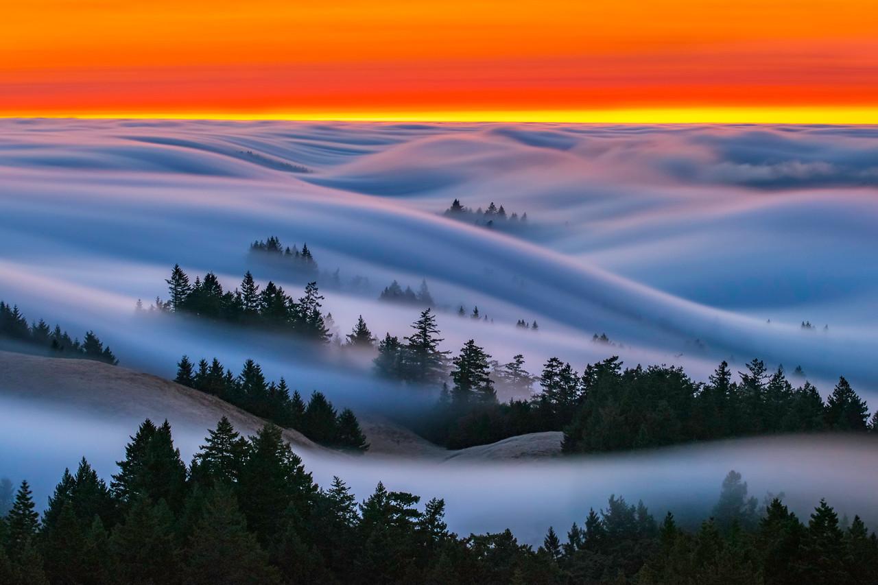 Fire Waves, Mt.Tamalpais State Park, CA