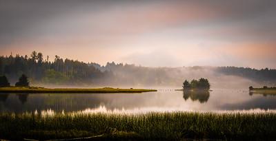 Siuslaw Mists
