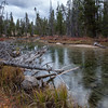 Redfish Lake Creek