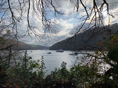 River Dart from Greenway estate