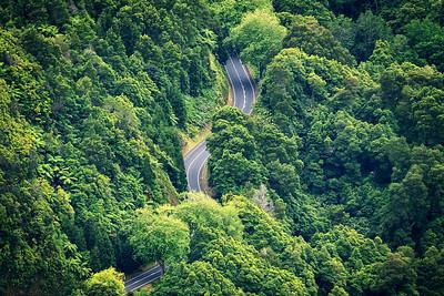 Dschungel Road
