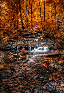 Fall Hollow Stream