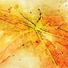 autumn splash ...