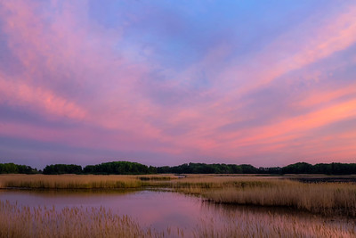 Bombay Hook National Wildlife Refuge
