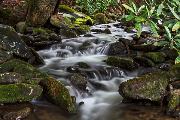 Cade's Cove Brook
