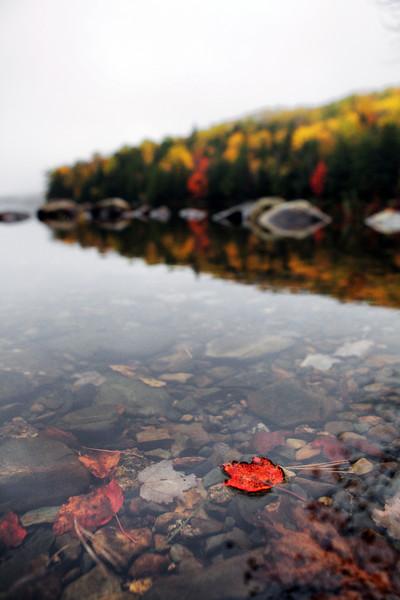 Nova Scotia, Canada. 2014