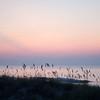 Sunrise at Litchfield Beach, SC