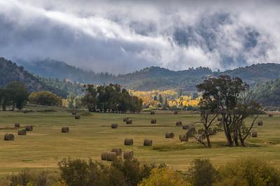 Hay harvest near Dallas Divide, Colorado