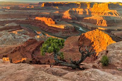 Dead Horse Canyon, Canyonlands, Utah.