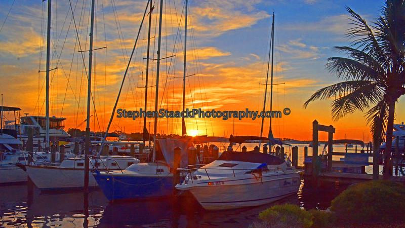 Estero Bay Marina.