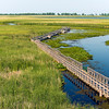 Point Pelee National Park, Leamington, Ontario, Canada