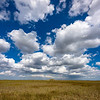 Puffy clouds in the Everglades, Florida