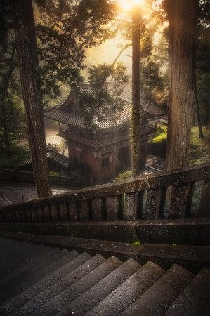 Forest Temple - Japan