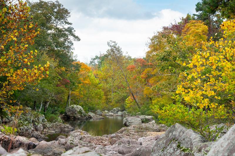 Autumn Shut-ins