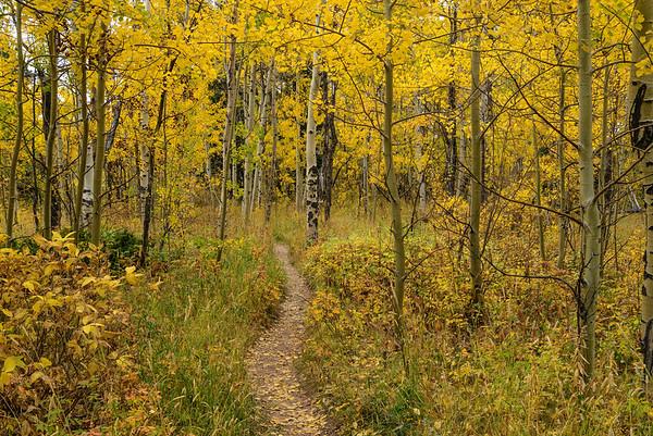 Vedauwoo Trail