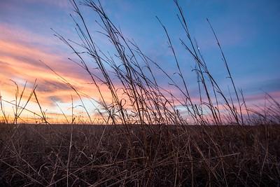 Sunset falls on Spring Creek Prairie near Lincoln, Nebraska.