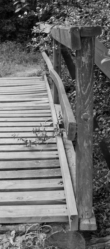 Bridge to Walk On
