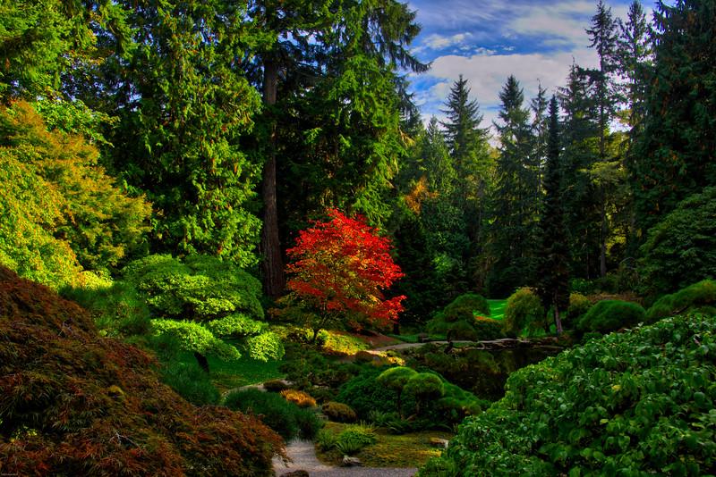 Serenity in Autumn