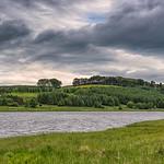 Piperdam Lake & Forrest in Scotland in Scotland under a rainy sky.
