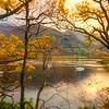 Autumnal tranquillity at Loch Leven...